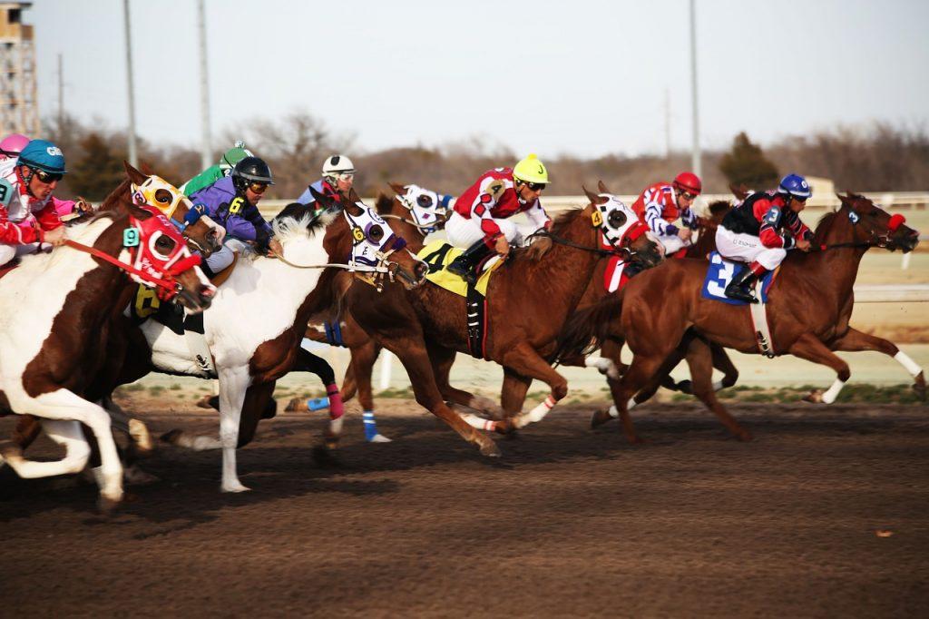 horses 2523299 1280 1024x682 - カジノとトルコ料理